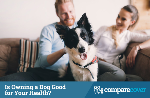 Is Owning A Dog Good for Your Health?