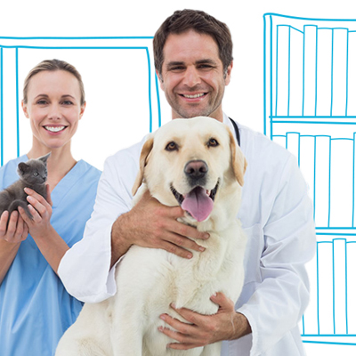 The Four Types of Pet Insurance Policy, Explained